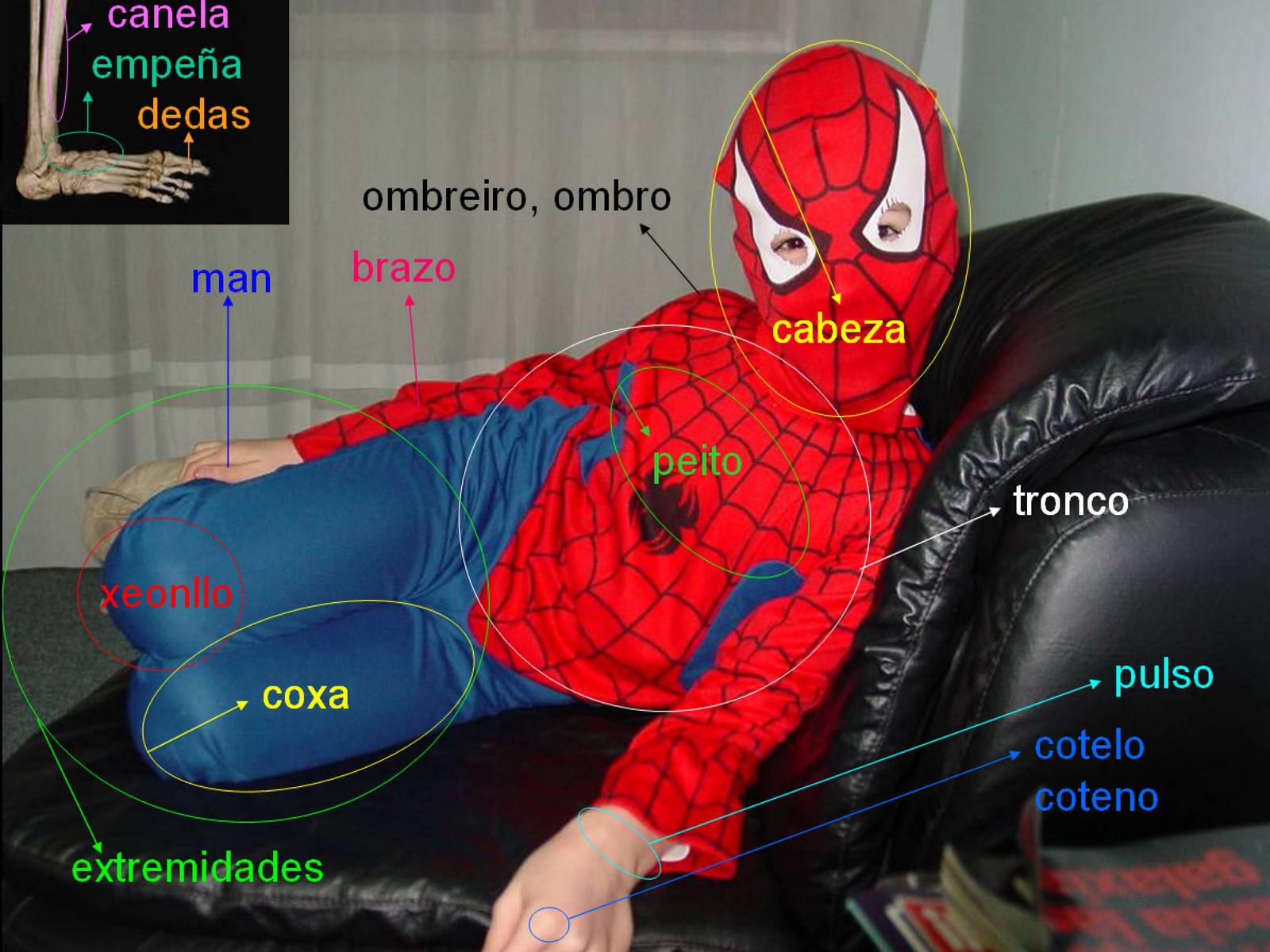 partes_do_corpo_1